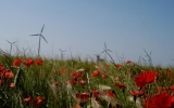 Wind Power Tops Spain's Electricity Source in 2013