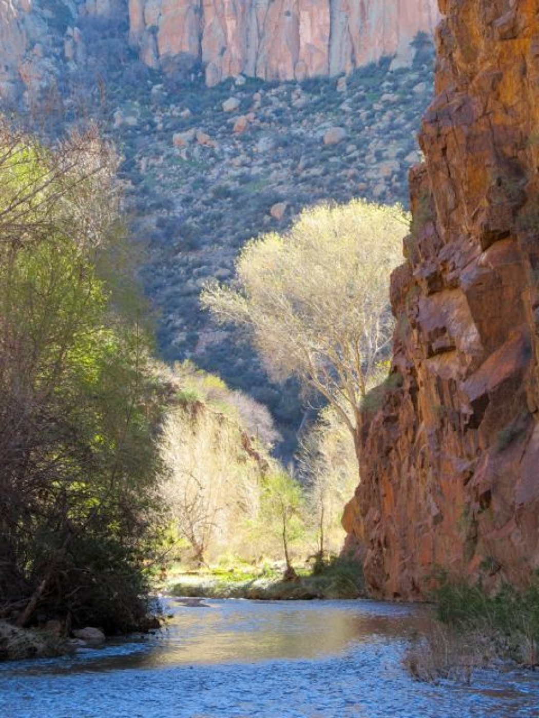Arizona State Representatives >> Public Lands May Be America's Best Climate Defense | Climate Central