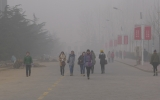 Study Questions China's CO2 Emissions Dip