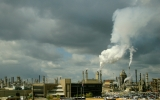 Focus on Carbon Removal a 'High-Stakes Gamble'