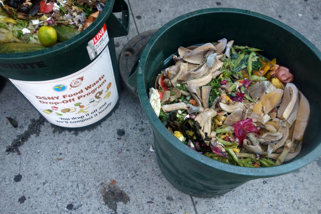 New Jersey Is Cutting Food Waste to Help the Climate ... Wasting Food