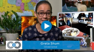 The Shum Show: Spreading Like Wildfire