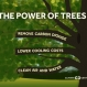 Widespread Climate Benefits of Trees