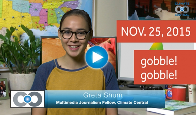 What's There to be Thankful for in Climate News?