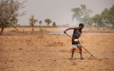 Earth Has Lost a Third of Arable Land in Past 40 Years