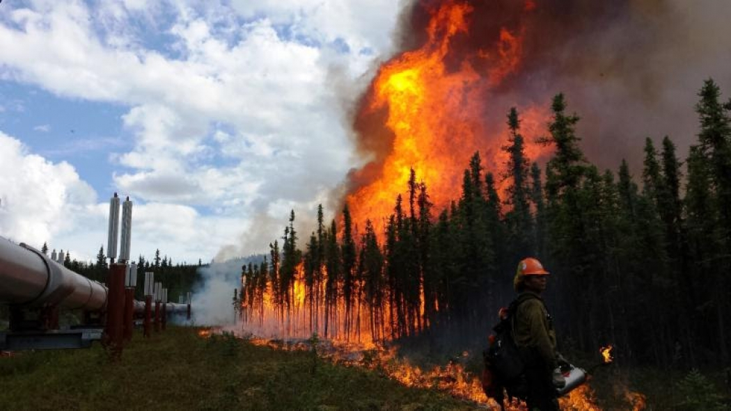 how climate change impacted 2015 s extreme weather climate central