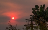 How Smoke From California's Fires is Harming the Most Vulnerable