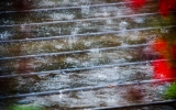 Rains From Thunderstorms Rising Rapidly in Europe, Asia