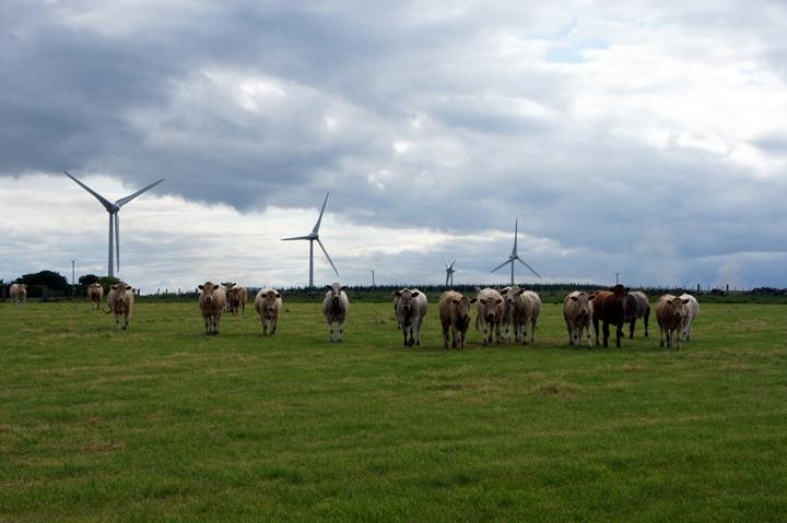 Scotland Eyes 50 Percent Renewable Energy by 2030