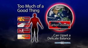 Isn't CO2 a Good Thing?