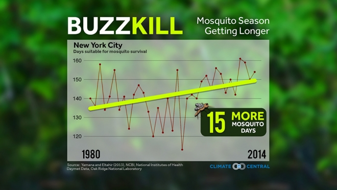 Mosquito Season Getting Longer