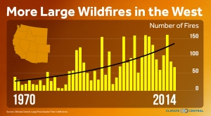 Western Wildfire Trends