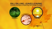 Climate Change and Fall Foliage