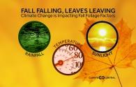Climate Change and Fall Foliage