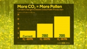 Climate Change Increases Grass Pollen Production