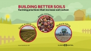 Building Better Soils
