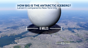 How Big is the Antarctic Iceberg?