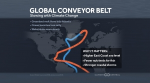 Global Conveyer Belt: Ocean Current Slowing