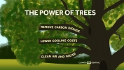 The Widespread Climate Benefits of Trees