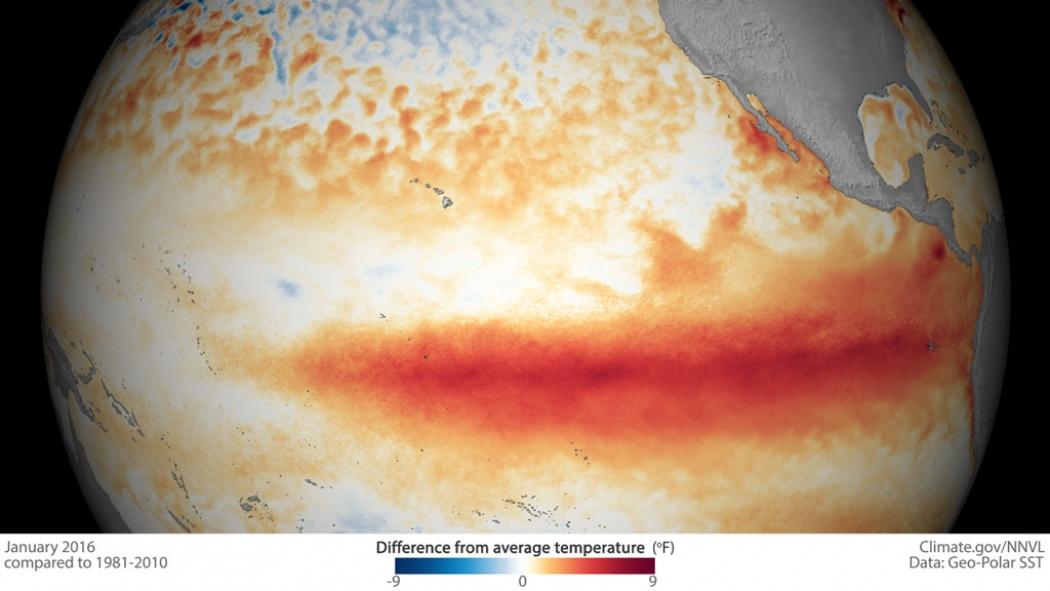 NOAA and NASA Team Up to Investigate Strong El Niño