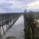 California Farmers Use Floodwater to Replenish Aquifers