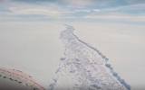The Larsen C Ice Shelf Crack Just Sprouted a New Branch