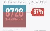 The Human Fingerprints on Coastal Floods