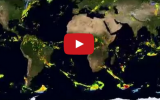 NASA Satellites Show Rain In Detail Like Never Before