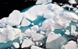 Arctic Sea Ice Dwindling Toward Record Winter Low