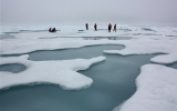 Arctic Sea Ice May Vanish Even With Climate Goal