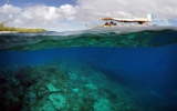 Scientists Alarmed at Great Barrier Reef Coral Bleaching
