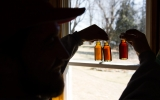 Climate Change Is Coming For Your Maple Syrup