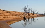 Scientists Trace Climate-Heat Link Back to 1930s