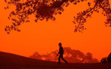Australia's 2014 Heat Wave Picks Up Where 2013 Left Off