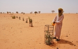 El Niño Could Bring Drought and Famine in West Africa