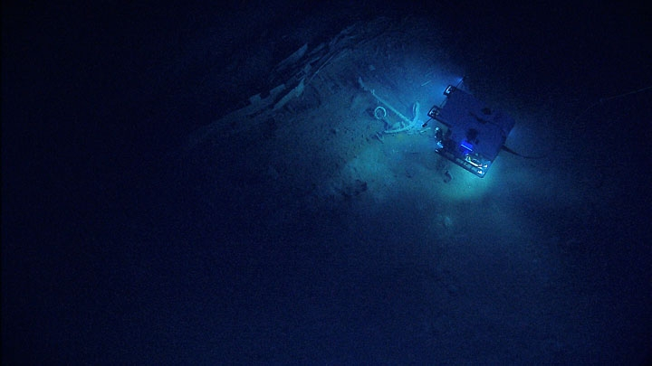 human activities are taking their toll in the deep ocean climate