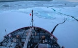 Rapidly Acidifying Arctic Ocean Threatens Species