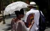 Global Warming Tipped Scales in Europe's Heat Wave