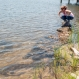 As Seas Rise, Americans Use Nature to Fight Worsening Erosion