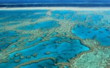 Countries With Coral Reefs Must Do More on Climate