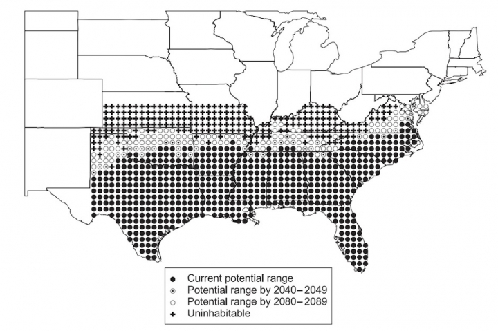 spread of red fire ants