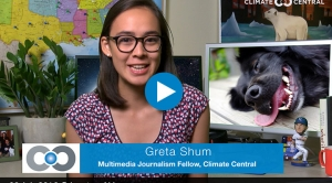 The Shum Show: Dog Days of Summer