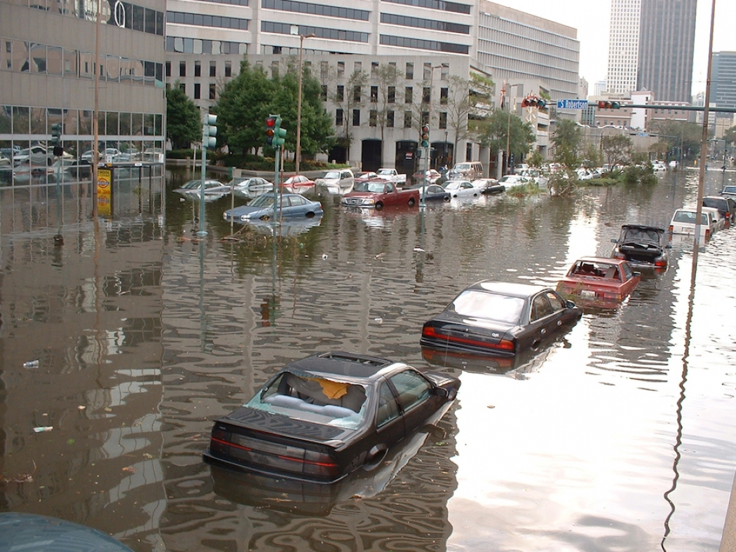 the effects of hurricane katrina Five survivors of hurricane katrina reflect on the changes the past decade has brought to the gulf coast and new orleans, and the importance of the rebuilding process on a personal level for me .