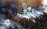 Large Wildfires Are Now More Common and Destructive