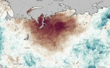 Sunburned in Siberia: Heat Wave Leads to Wildfires