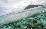 U.S. Seeks Greater Focus on Ocean Warming