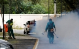 Scientists Tease Out Climate Change's Role in Zika Spread