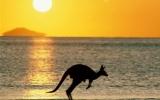 What's Causing Australia's Heat Wave?