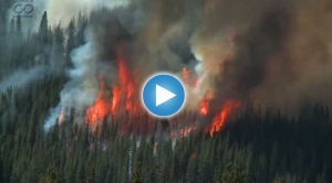Wildfires Out West