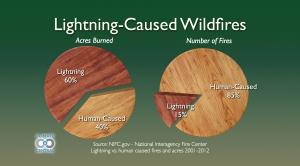 Lightning-Caused Wildfires